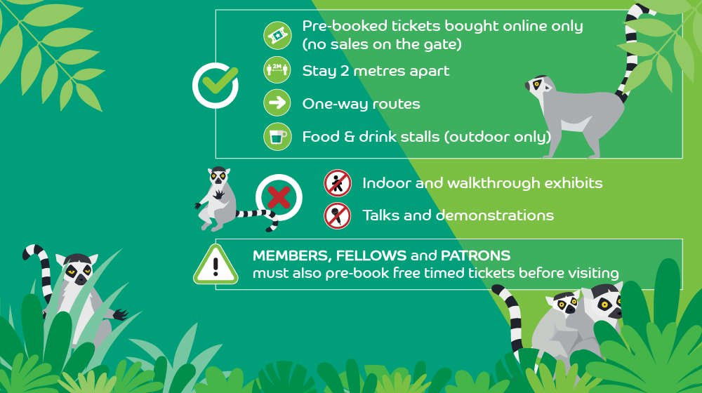 ZSL London Zoo uses icons on their site and offline.