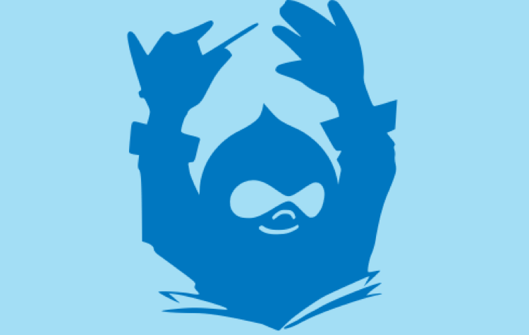 Getting started with Drupal 8 and Composer