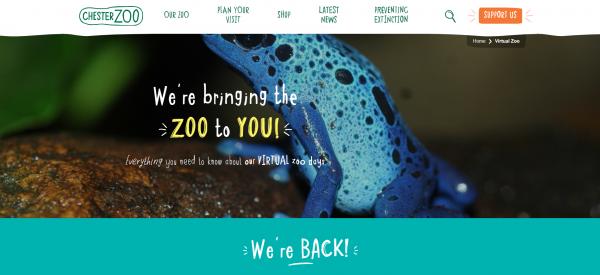 Chester Zoo Virtual Tour
